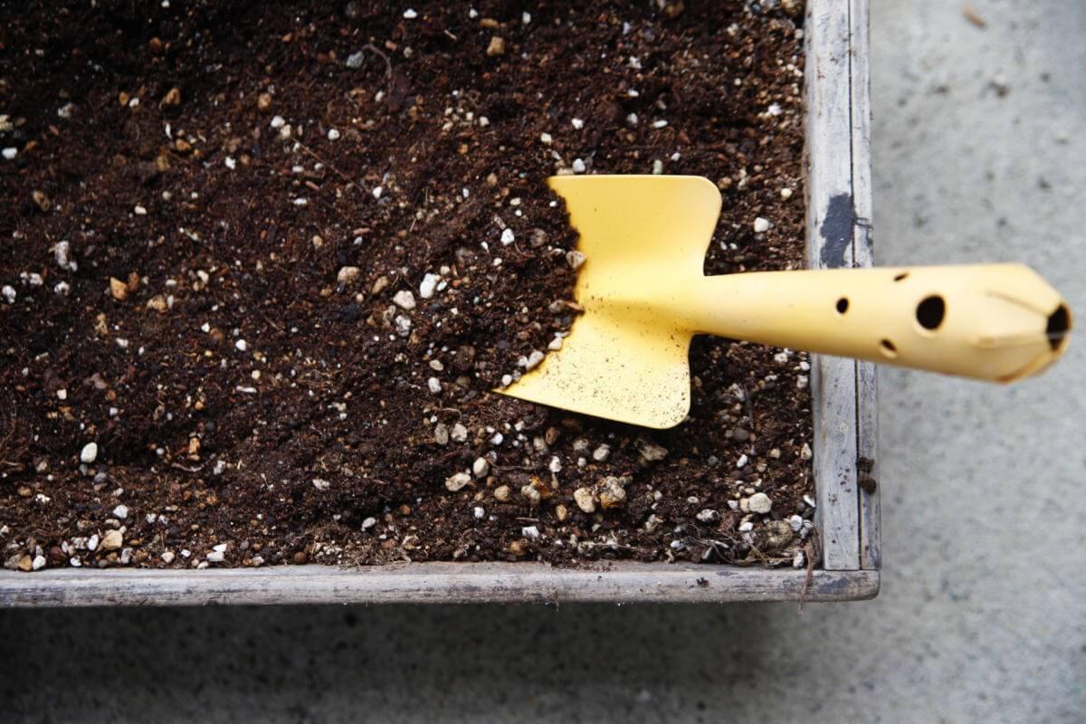 庭木の肥料